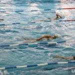 В Кургане справки для детей в бассейн стали платными
