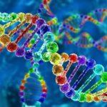 Многие болезни психики связаны со 100 генами